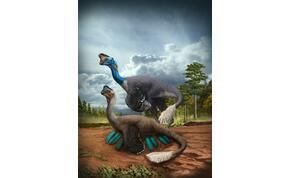 Elképesztő: ez az első ilyen dinoszaurusz maradvány a világon