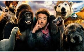 Bejelentették az Arany Málna-jelölteket: a Dolittle lesz az év legrosszabb filmje?