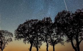 Napi horoszkóp: előre tudsz haladni, vagy éppen visszaesel?
