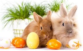 Múmiával és Halálfutammal ünnepli a húsvétot a TV2 Csoport