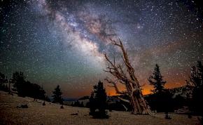 Napi horoszkóp: muszáj leszel higgadt döntéseket hozni
