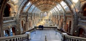 Jesszus! Egy középkori katedrálisban tárul fel az emberiség eltitkolt történelme? - videó
