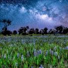 Napi horoszkóp: muszáj leszel kordában tartani a problémákat