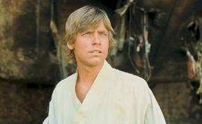 Ennek a kihalt óriásmadárnak a tetemétől még Luke Skywalker is ledöbbent