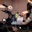 Az állatkínzás ellen készül magyar-amerikai játékfilm a magyar Jason Momoával