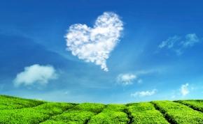 Válassz a 3 kártya közül és kiderül: érkezik a nagy szerelem? – napi jóslás