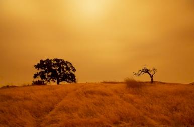 Tovább tombol az erdőtűz Kaliforniában